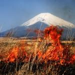 東富士演習場 野焼き