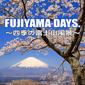 iTunes Store「FUJIYAMA DAYS.」