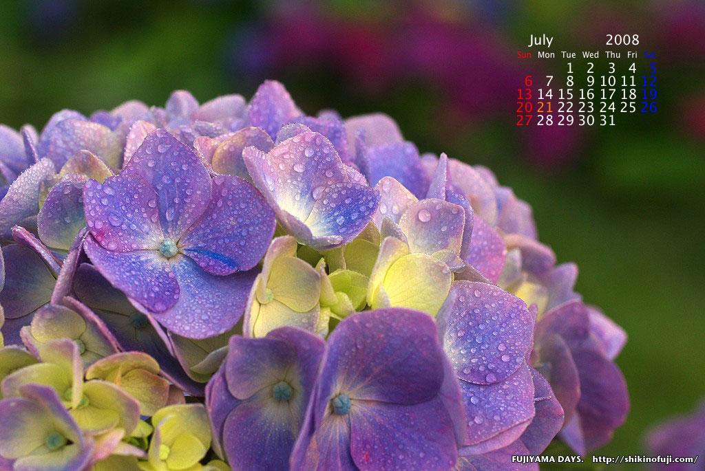 2008年7月カレンダー