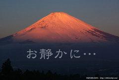 お静かに…(紅富士)